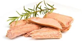 Ingrediente fresquinho de hoje: Atum