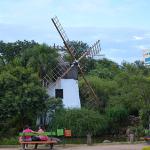 Turismo Porto Alegre: Parque Moinhos de Vento