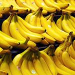 Ingrediente fresquinho de hoje: Banana