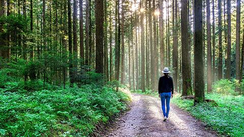 Cuide da saúde: Tenha mais contato com a natureza